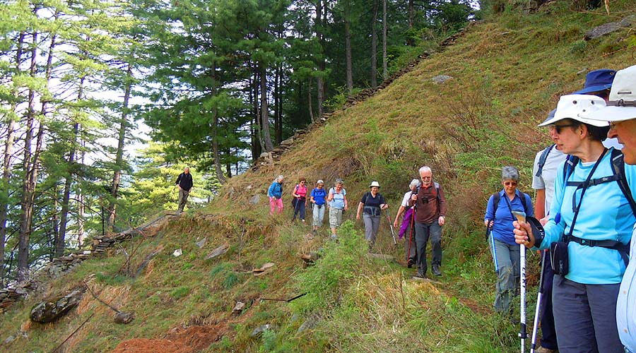 himalayan walk tour, day hike tours dharamsaala